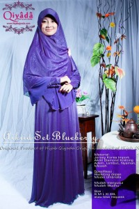 aikiid set bluberry