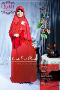 aikiid set red